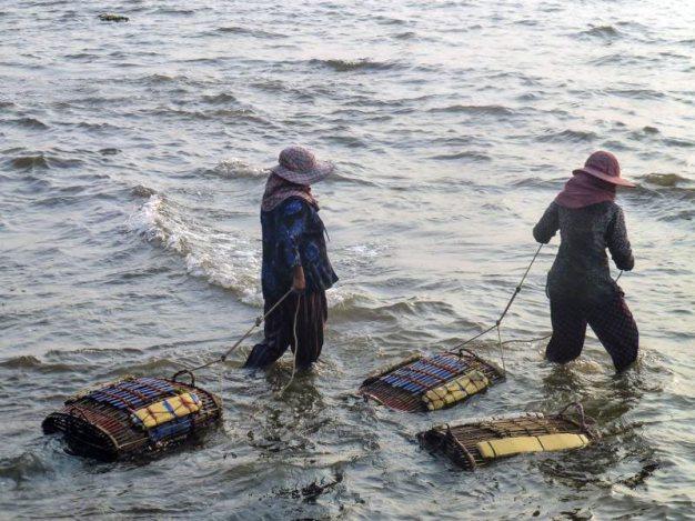 Połów krabów w Kambodży