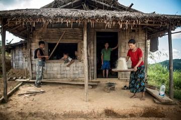 Narzędzia do produkcji ryżu - foto