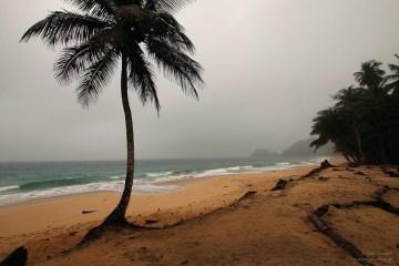 Plaża w Afryce - foto