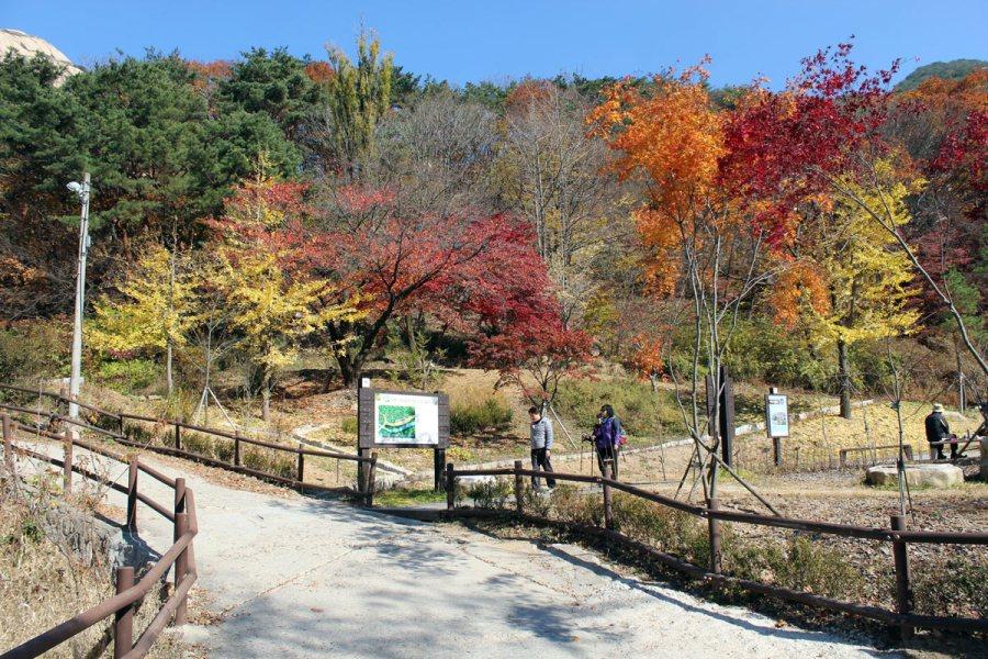 Park Bukhansan. (Fot. Arek Braniewski)