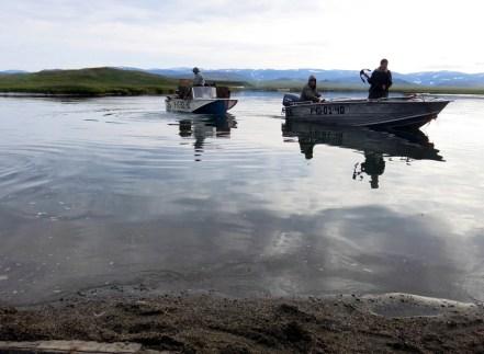 Poranek. Łódki z myśliwymi wypływają na polowanie.