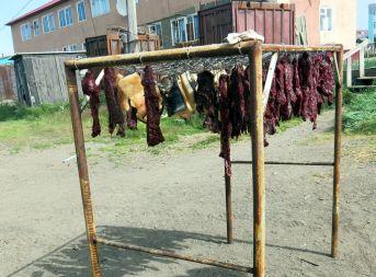 Czukotka. Suszenie mięsa z wieloryba