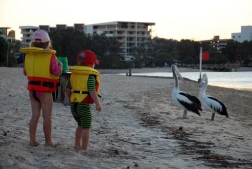 Australia, Sunshine Coast, Queensland