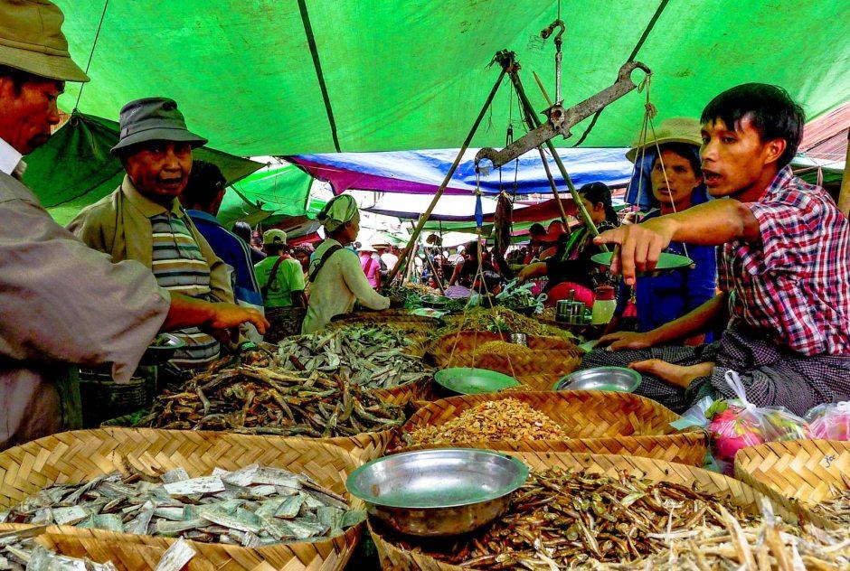 Targ rybny w Mandalaj, Zdjęcia z podróży do Birmy