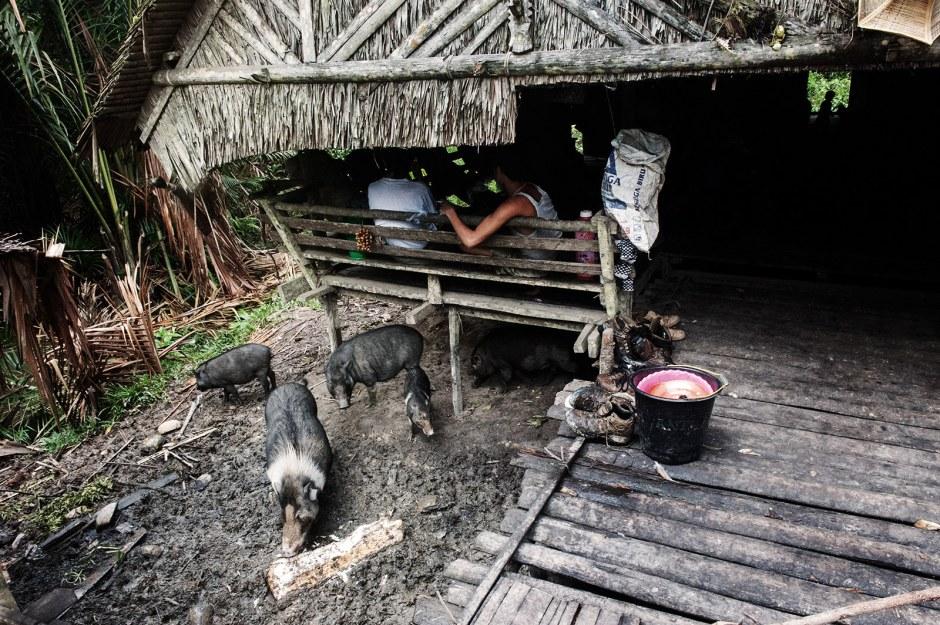 Indonezja, zdjęcia z wioski Mentawajów