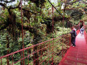 Kostaryka - las chmurowy w Monteverde