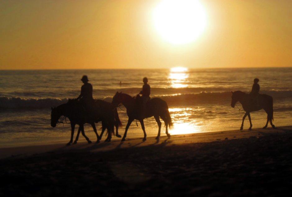 Kostaryka, wakacje, Santa Teresa, przejażdżka konna wybrzeżem