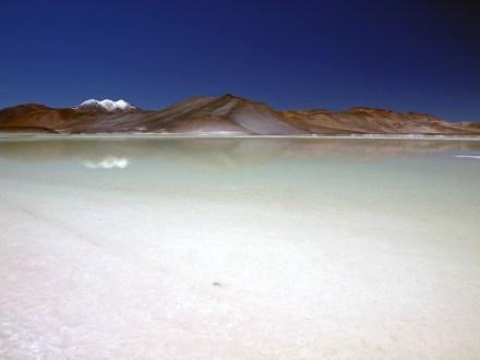 Solnisko Salar de Talar na pustyni Atakama w Chile