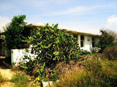 Aruba, opuszczony dom