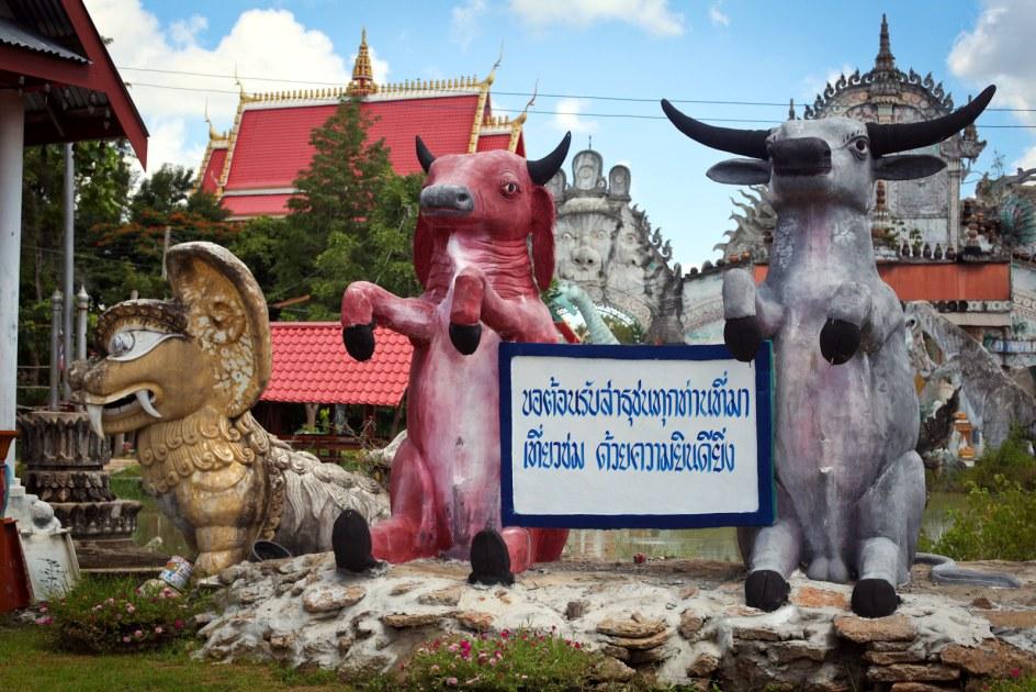Tajlandia, Wat Pa Non Sawan, religia, zdjęcia, photo