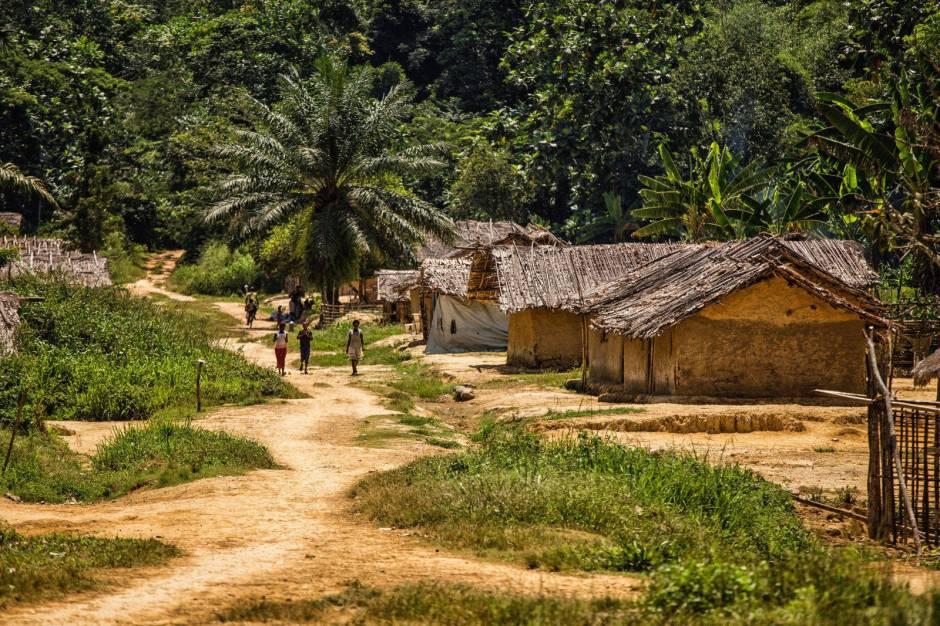 Kongo, Bartek Sabela
