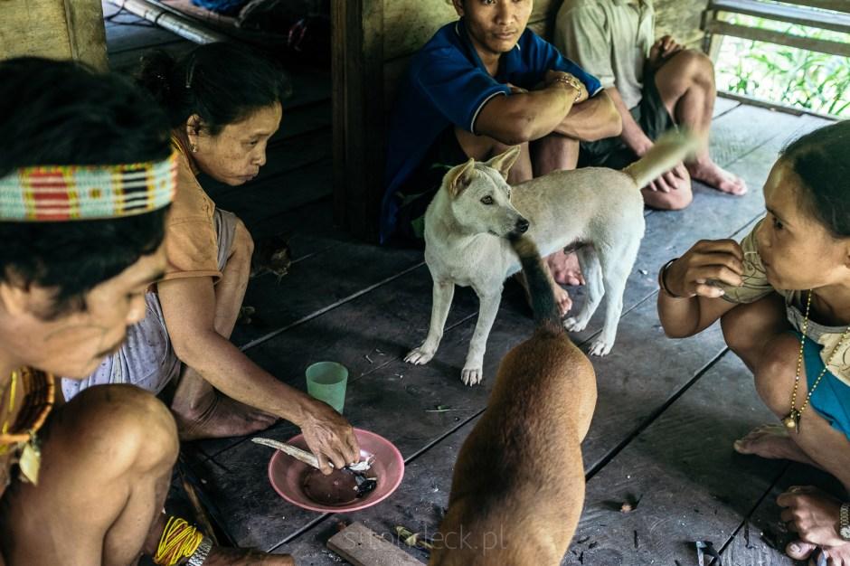 Indonezja, Mentawaje, sumatra, daily live, photos gallery