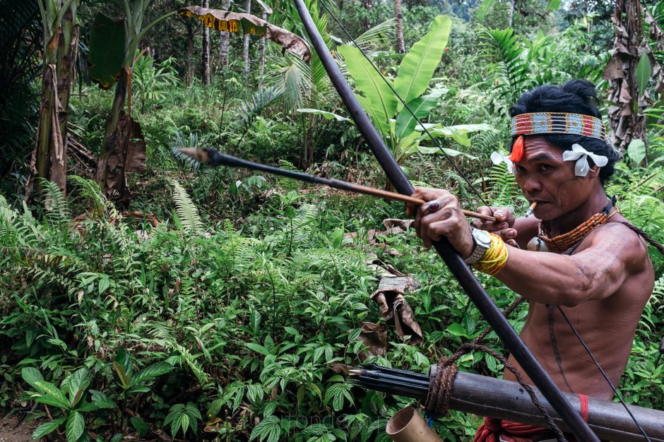 Indonezja, Mentawaje, polowanie, dżungla, indianie