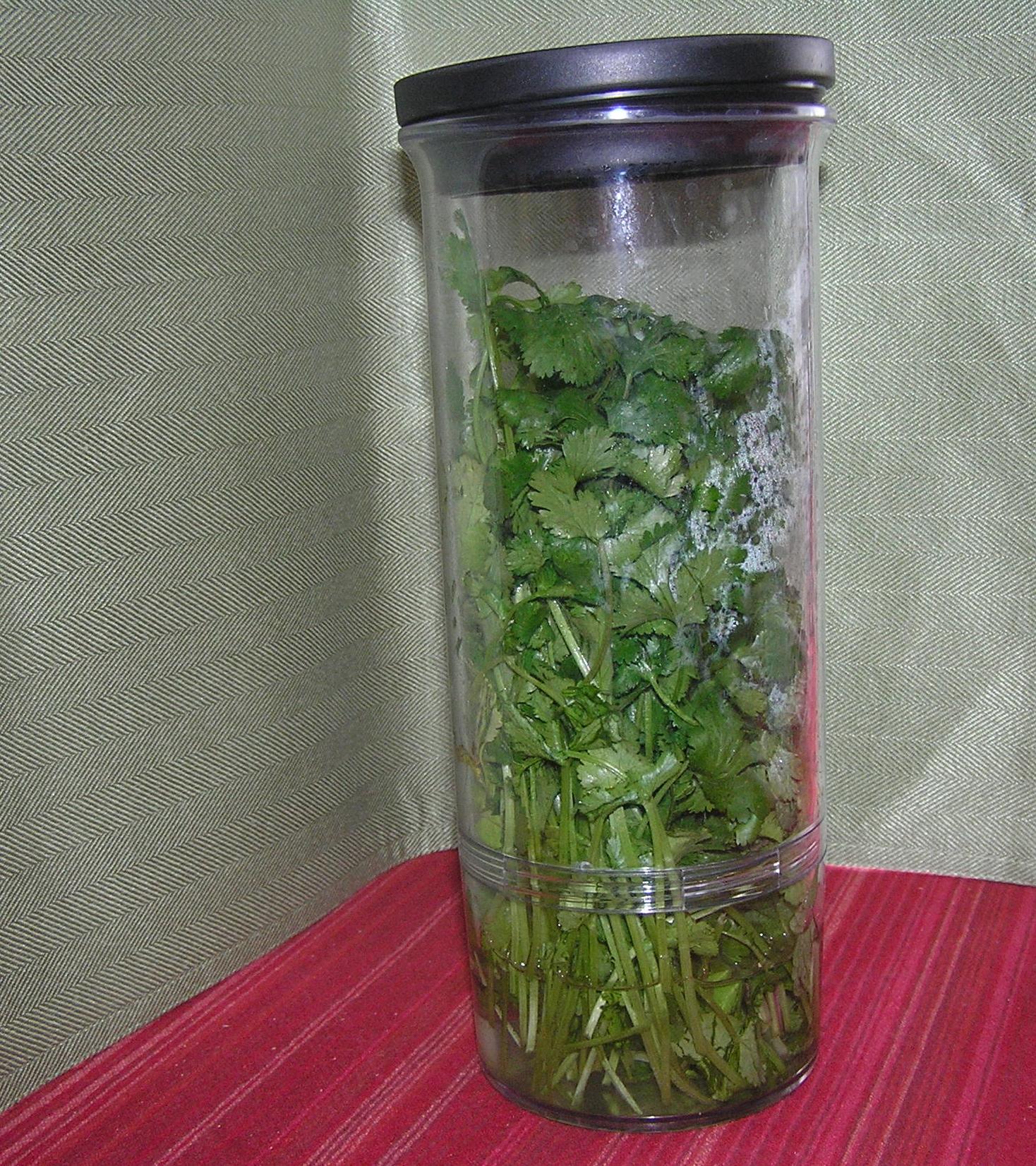 food-herb-holder
