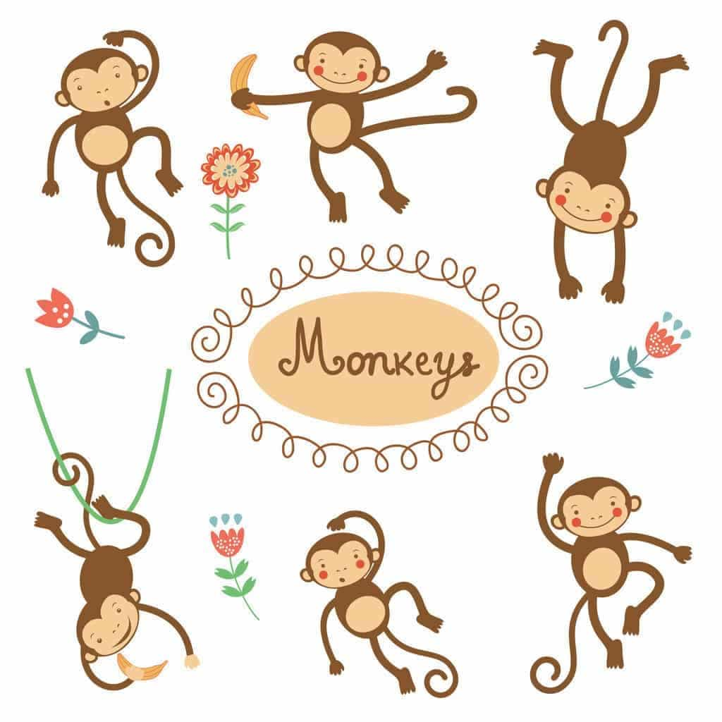 Monkey Curriculum