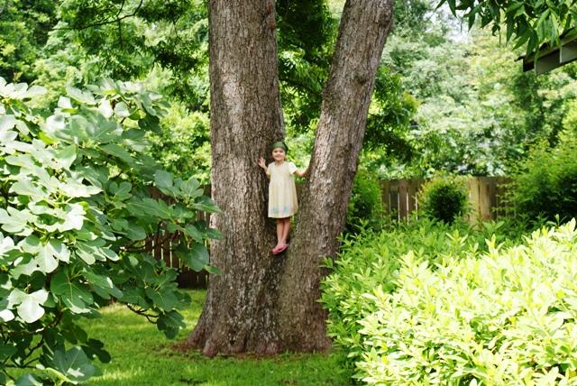 Vivian in the tree, bungalow