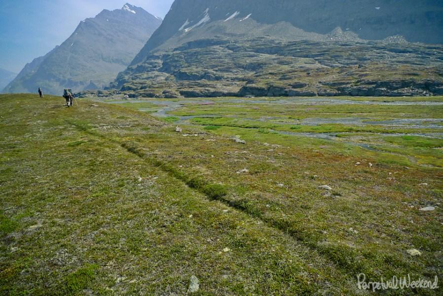 Bear trail hiking in Alaska