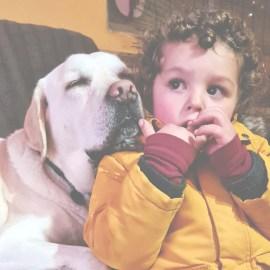 ¿Existen mejores razas de perro para convivir con niños?