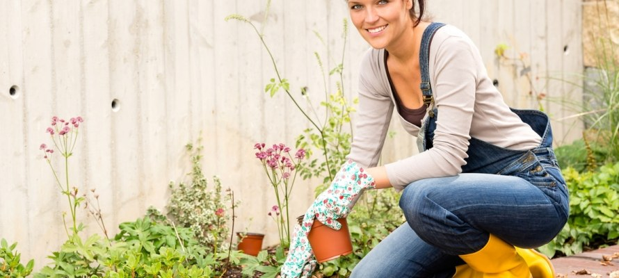 Garden picture for Perry Homes spring blog.