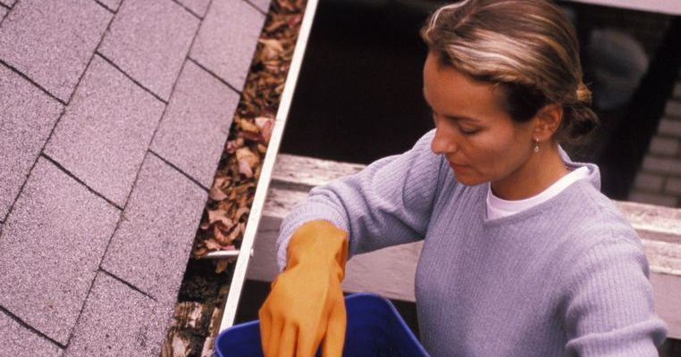 Women cleaning out gutters.