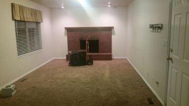 Before Carlson Fireplace