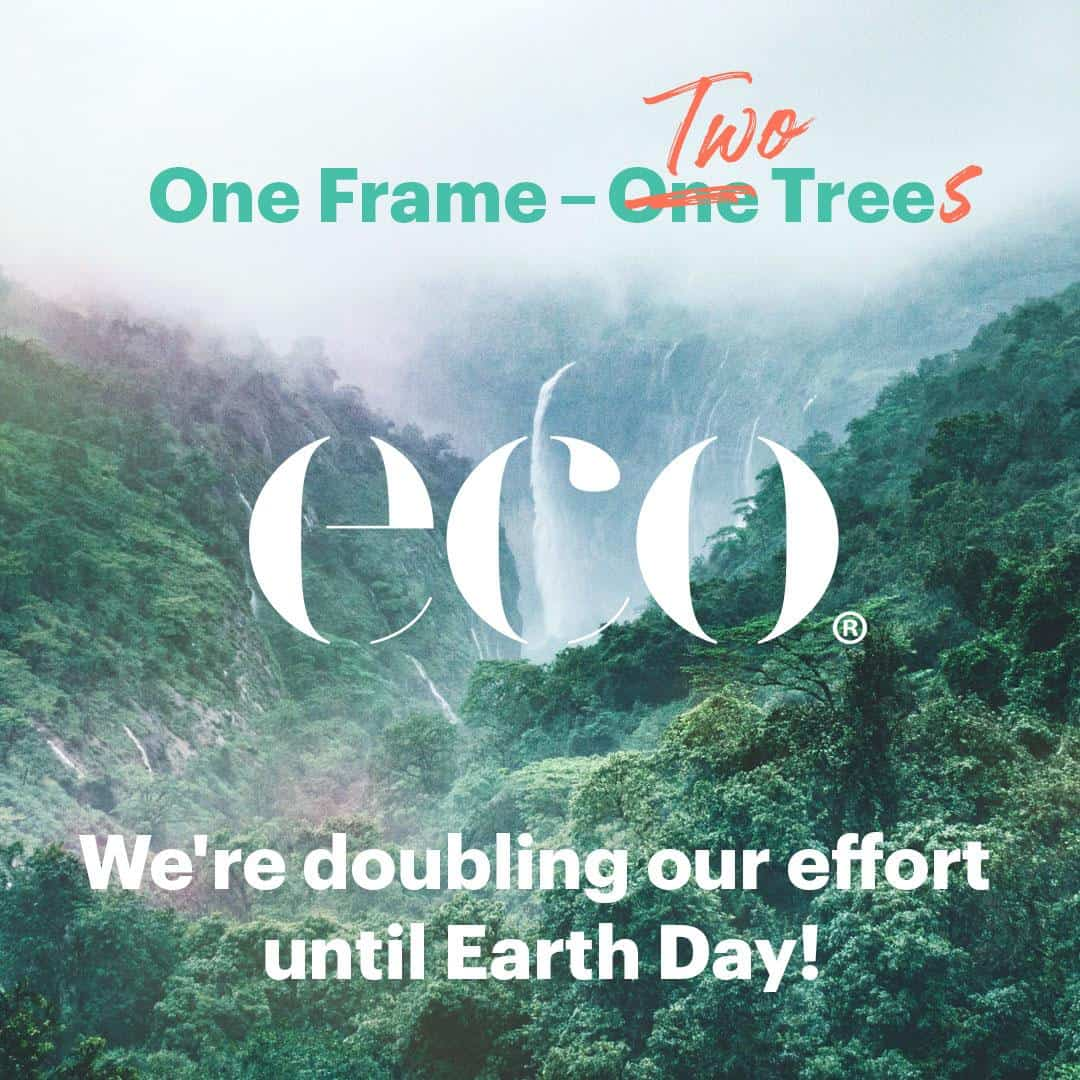 ECO eyewear logo