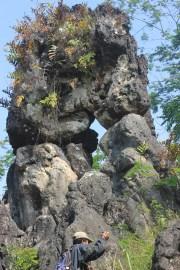 Salah satu potensi wisata di sebuah bukit Jatimulyo