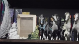 This is on a bookshelf on the West wall. Quan Yin sits here, with what will become the Water shrine. Also seen here are some of my Grand Champion horses.