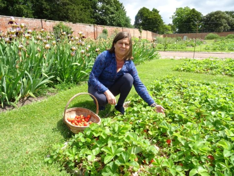 Karen Cronin, owner of The Walled Gardens at Croome