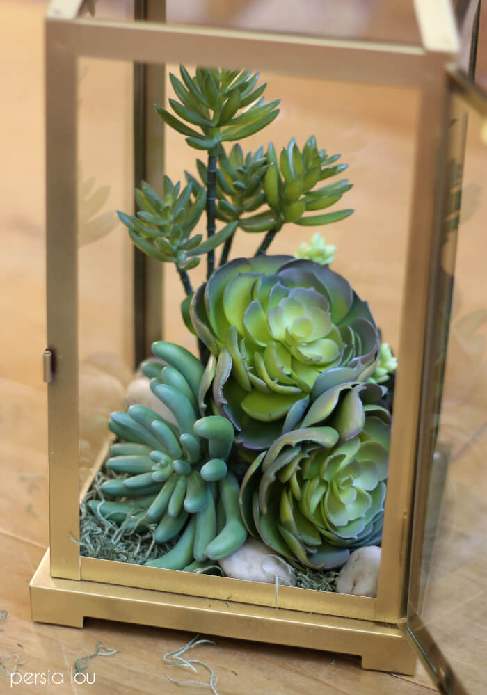 DIY Lantern Terrarium Tutorial Persia Lou