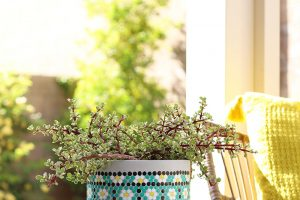 DIY Vintage Floral Dot Painted Planter with DecoArt