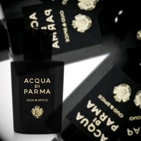 Обзор Acqua Di Parma Oud & Spice от признанного парфюмерного критика Persolaise, 2021 г.