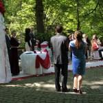 весільна церемонія в Стрийському парку