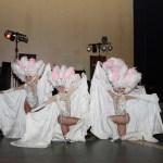 выступление шоу балета на мероприятия