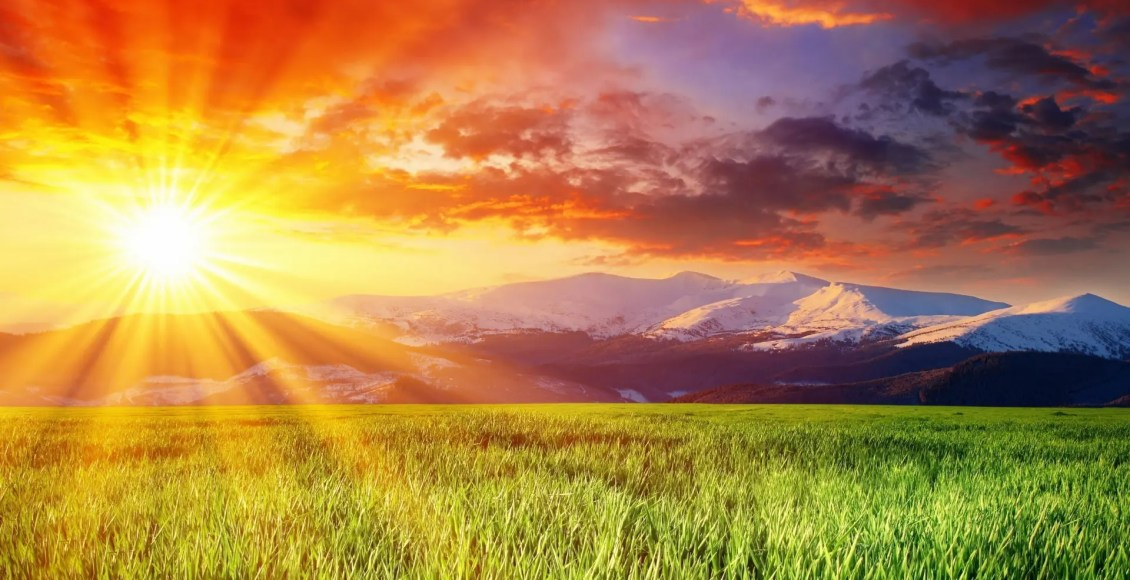 blog picture of sunrise in a field