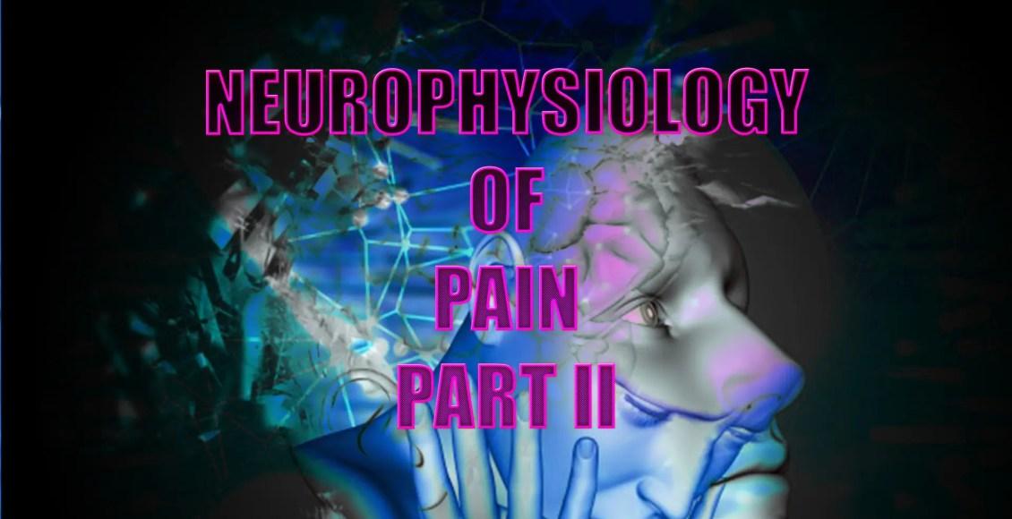 neurofisiología el paso tx.