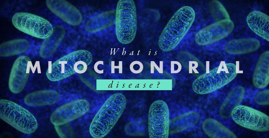 What is Mitochondrial Disease?   El Paso, TX Chiropractor