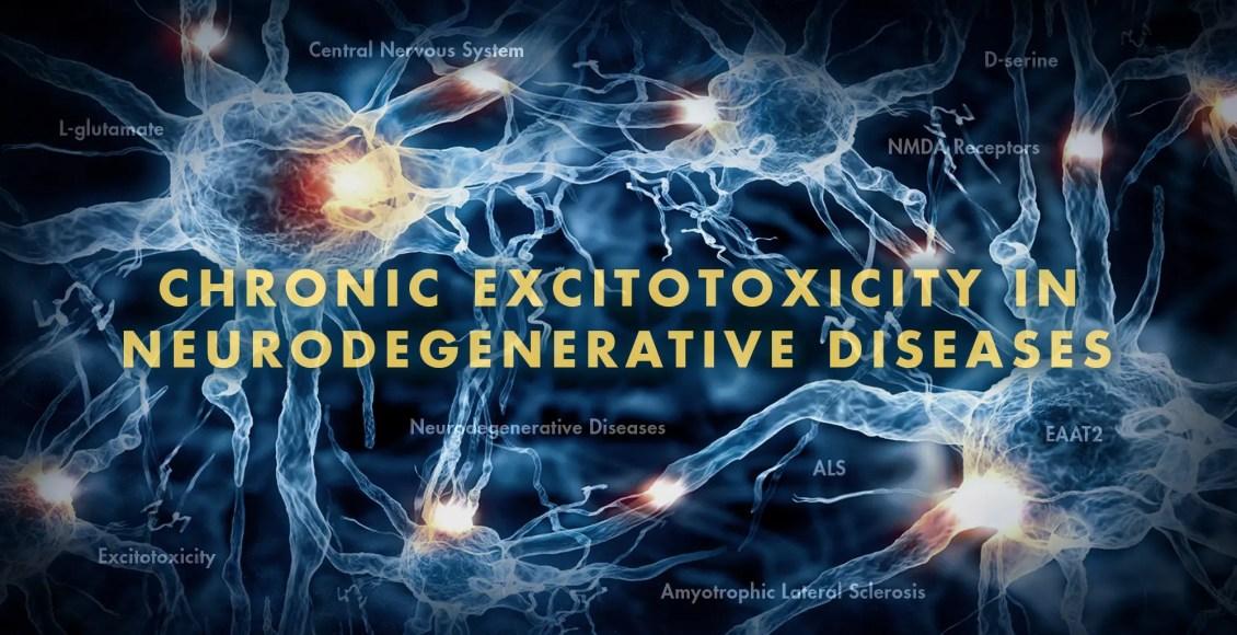 Functional Neurology: Chronic Excitotoxicity in Neurodegenerative Diseases   El Paso, TX Chiropractor