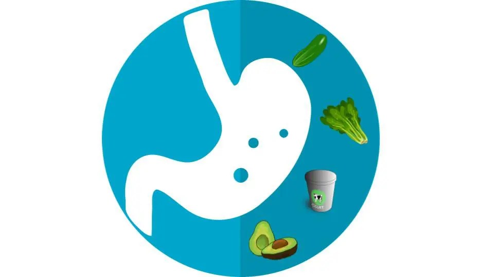 Super Foods For A Super Gut