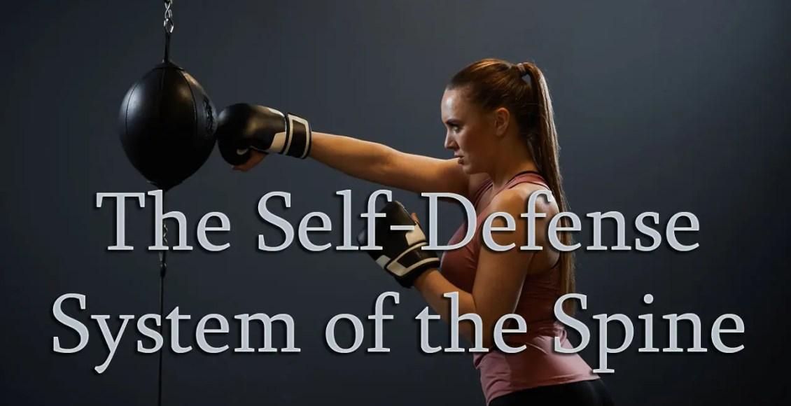 11860 Vista Del Sol, Ste. 128 The Self-Defense System of The Spine El Paso, Texas