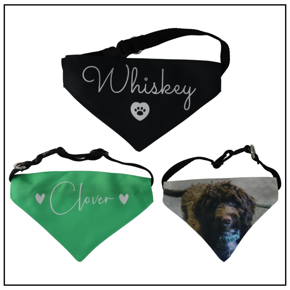 Pet Clothing & Accessories