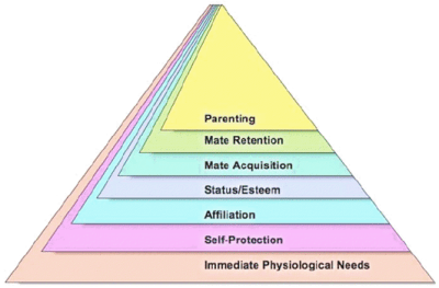 Evolutionary psychologists' revised hierarchy of needs