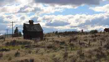 PersonalProfitability.com Boyd Oregon Mill