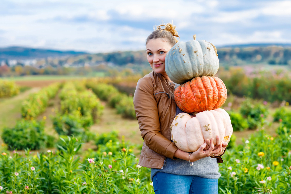 Which squashes can you eat when you are low-carbing? Personal Trainer Food has the answer.
