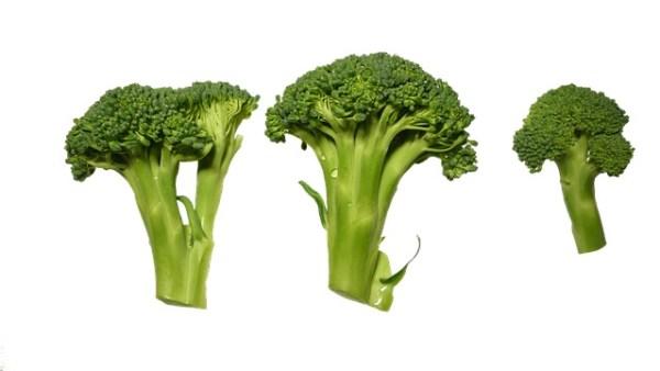 Broccoli-rijst met garnalen