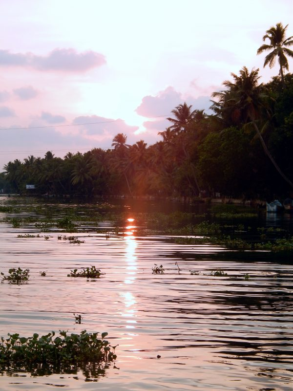 Le backwaters del Kerala, India