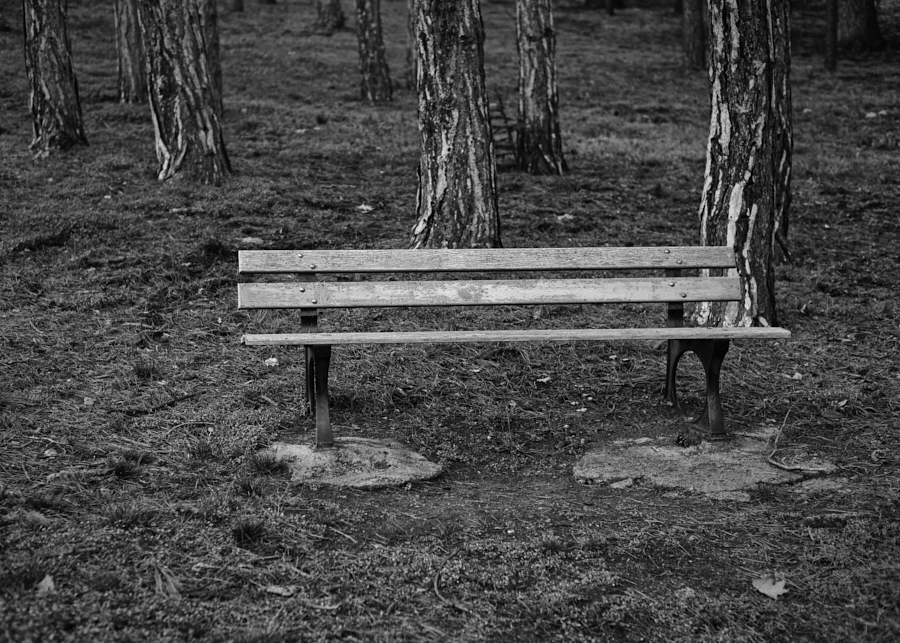 Solitude interdite