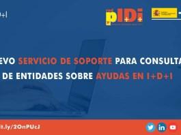 red pi+d+i consultas entidades