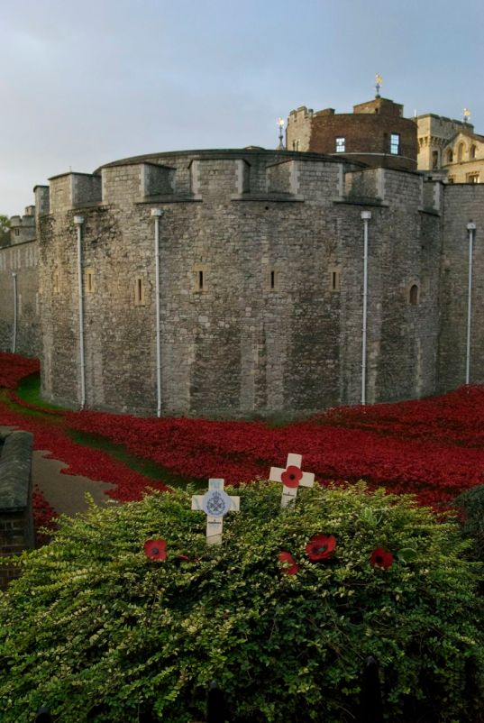 Individual remembrance at Tower