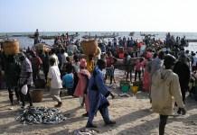 Fischerei Senegal